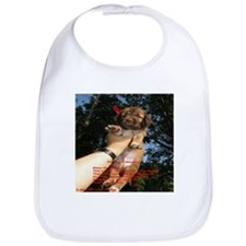 The Puppy Blessing Bib