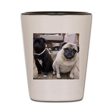 Black Pug Shot Glass