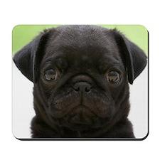 Black Pug Mousepad