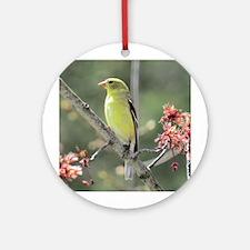 American Goldfinch Ornament (Round)