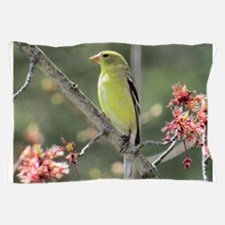 American Goldfinch Pillow Case
