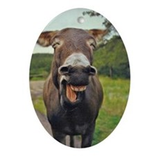 Laughing Donkey Oval Ornament