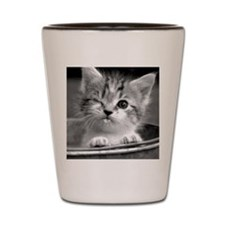 Cute Winking Kitten Shot Glass