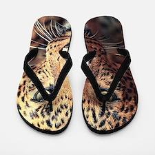 Leopard Portrait Flip Flops