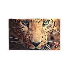 Leopard Portrait 3'x5' Area Rug