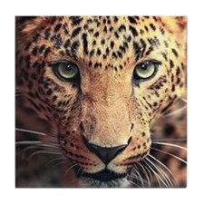 Leopard Portrait Tile Coaster