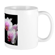 White Phalaenopsis Orchid Mug