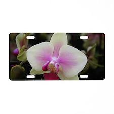 Yellow Phalaenopsis Orchid Aluminum License Plate