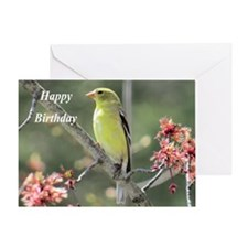 American Goldfinch Greeting Cards