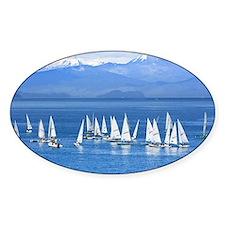 Sail Boats Decal