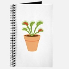 Venus Fly Trap Carnivorous Potted Plant Journal