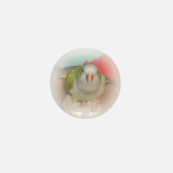 Quaker 4 Mini Button