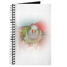 Quaker 4 Journal