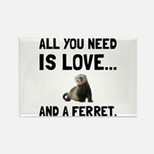Love And A Ferret Magnets