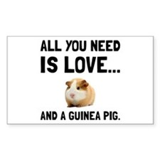 Love And A Guinea Pig Decal