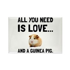Love And A Guinea Pig Magnets