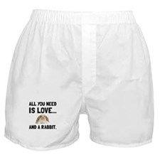 Love And A Rabbit Boxer Shorts