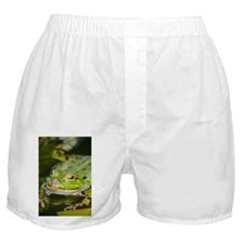 European Frog Boxer Shorts