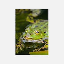 European Frog 5'x7'Area Rug