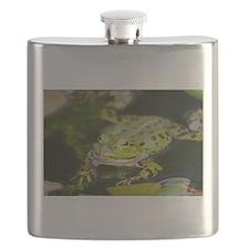 European Frog Flask