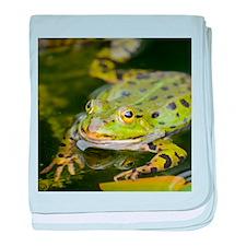 European Frog baby blanket