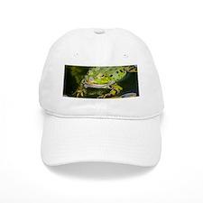European Frog Baseball Baseball Cap