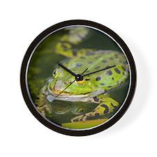 European Frog Wall Clock