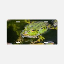 European Frog Aluminum License Plate