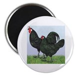 La Fleche Rooster and Hen 2.25