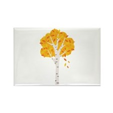 Fall Autumn Birch Tree Changing Leaves Magnets