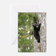Bear Cub Greeting Cards