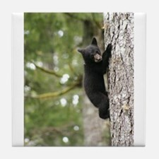 Bear Cub Tile Coaster