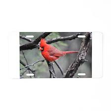 Cardinal in Sabino Canyon Aluminum License Plate