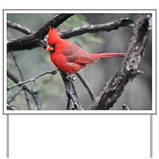 Cardinal in Sabino Canyon Yard Sign