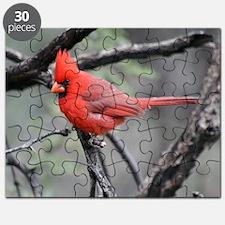 Cardinal in Sabino Canyon Puzzle