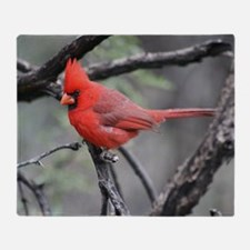 Cardinal in Sabino Canyon Throw Blanket