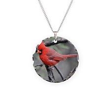 Cardinal in Sabino Canyon Necklace