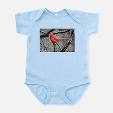 Cardinal in Sabino Canyon Body Suit