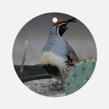 Gambels Quail in Sabino Canyon Ornament (Round)