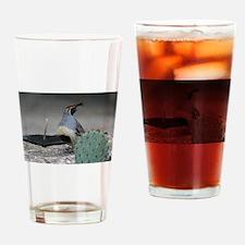 Gambels Quail in Sabino Canyon Drinking Glass