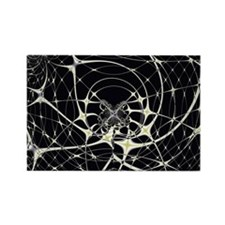 Abstract Art Magic Spiderweb Magnets