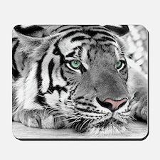 Lazy Tiger Mousepad