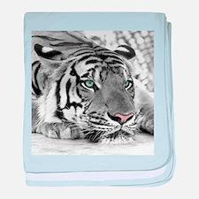 Lazy Tiger baby blanket