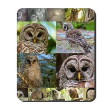 2014 OwlWatch Montage Mousepad
