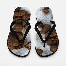 Sickflops - Steamy Hot Mess Of Crap Flip Flops