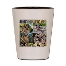 2014 OwlWatch Montage Shot Glass
