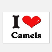 I love camels  Postcards (Package of 8)