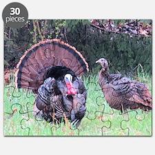 Wild Turkeys Puzzle