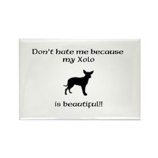 Dont hate...Xolo Magnets