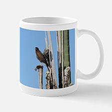 Harris Hawk in Arizona Mugs